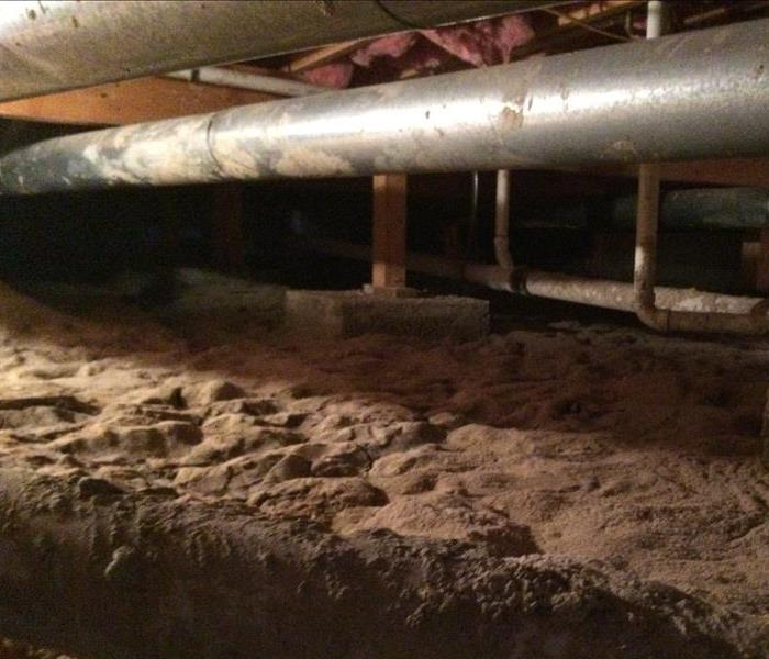 Montrose Mold Problems in a Crawlspace Before