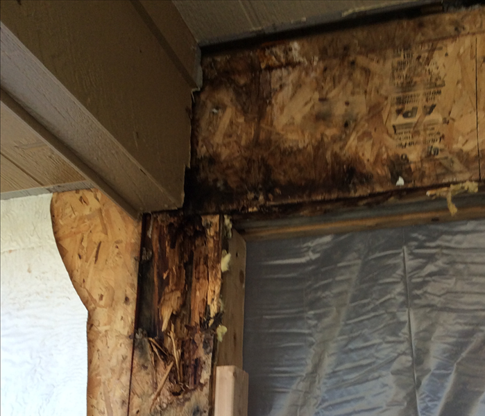 Telluride Mold Problem on the Porch