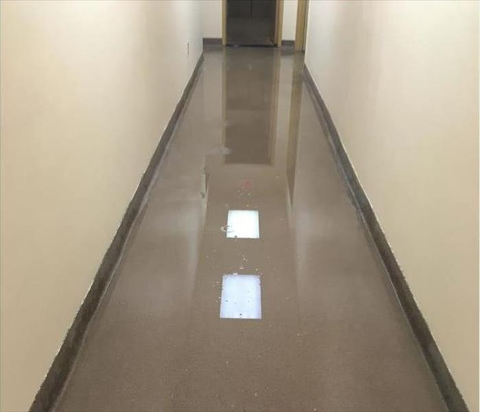 Montrose Water in a Corridor