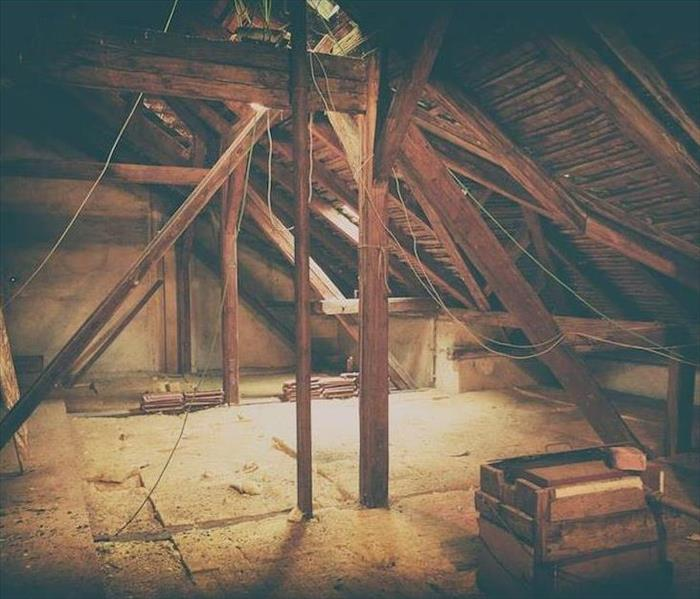 Mold Remediation The Likelihood of Mold Damage in Your Delta Attic