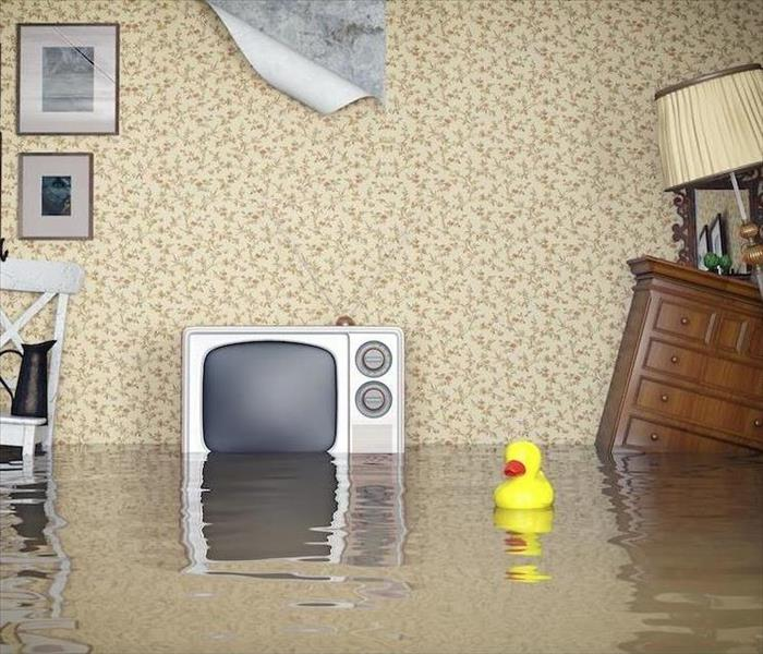 Water Damage Don't Let Water Damage in Crested Butte Control Your Life