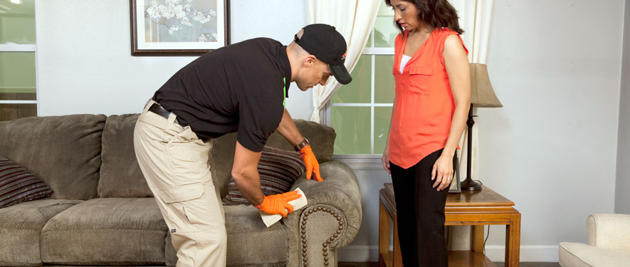 Montrose, CO carpet upholstery cleaning