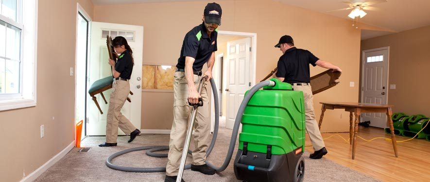 Montrose, CO cleaning services